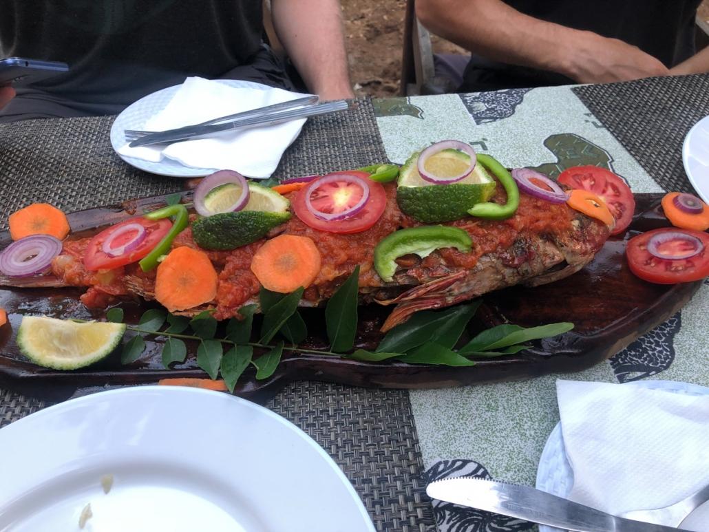 Yummi fish